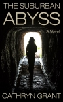 The Suburban Abyss psychological thriller